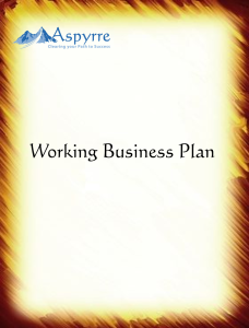 working biz plan pic