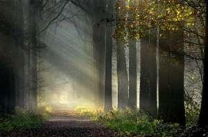 spiritual_journey01